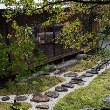 四季を感じることが出来る庭の眺め