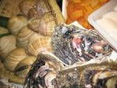 牡蠣・はまぐり・ほっき貝ほか貝が充実!