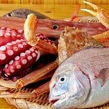 築地から旬の魚介類を仕入れ、職人の確かな手仕事でご提供!