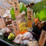 【明石お造り盛り】 昼網で獲れた新鮮なお魚のみで提供致します