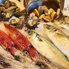 長浜漁港直送の新鮮な味わいに舌鼓