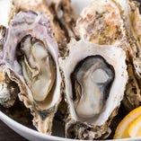 新鮮でさっぱりとした味わいの国産牡蠣