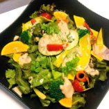 10種類野菜のサラダ バーニャカウダドレッシング