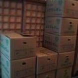 本日は橙(だいだい)22箱