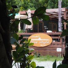 自然あふれるカフェ