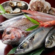 目利きが選んだ旬鮮魚を堪能