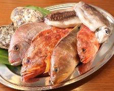 島根県益田市直送の新鮮魚介