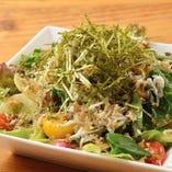湘南佐島シラスの和風サラダ