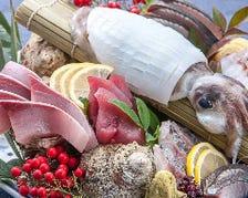 ヤリイカの姿造りに本日の玄海朝〆鮮魚朝〆盛り合わせ