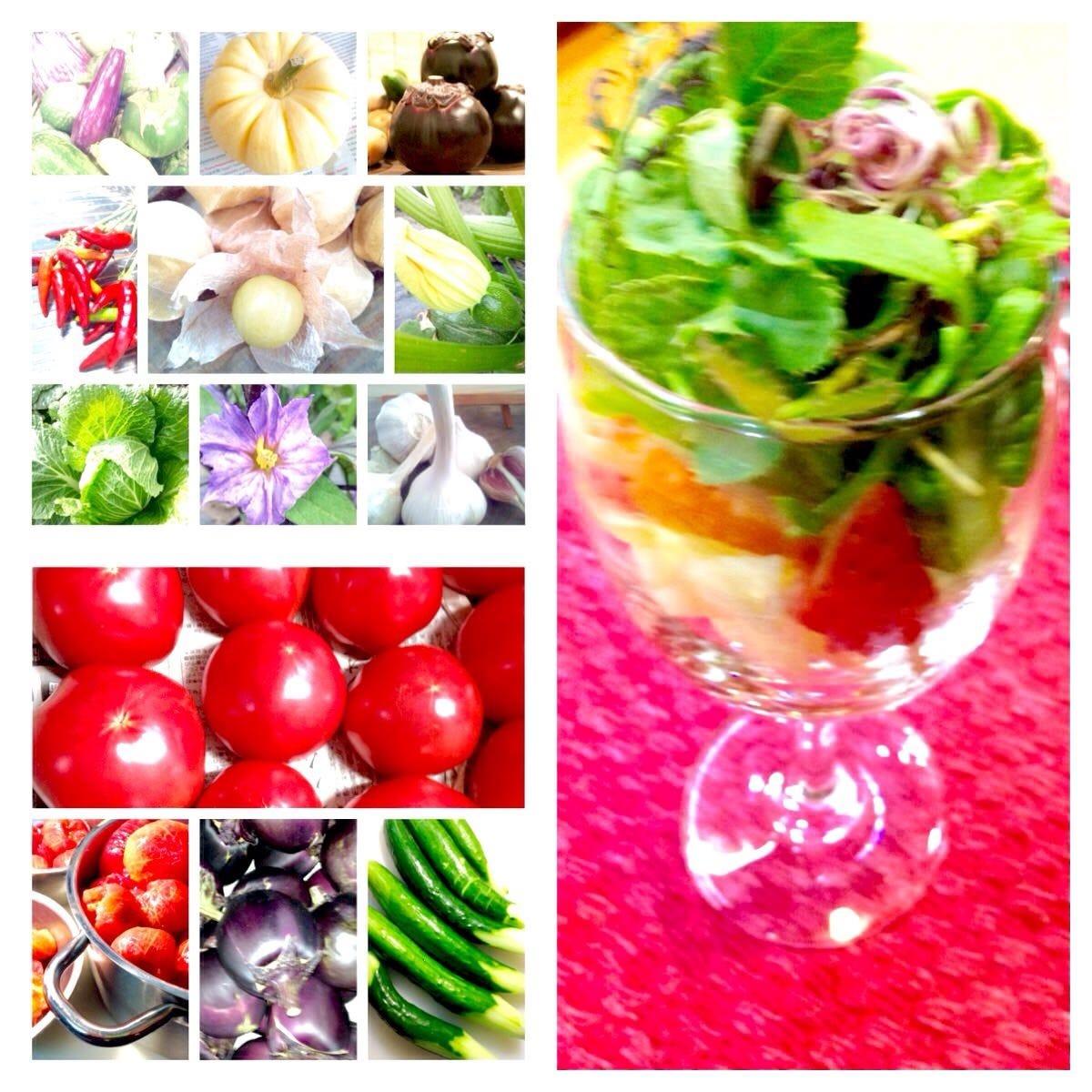 京野菜を中心に無農薬・減農薬野菜