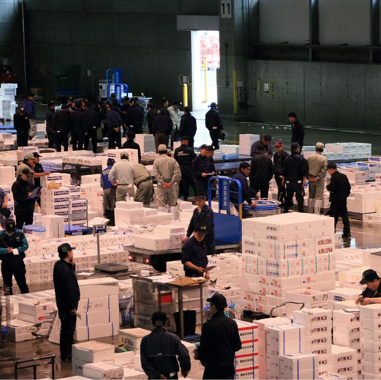 【市場】札幌中央市場から毎日仕入