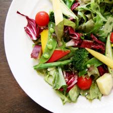 新鮮な京野菜を使用したサラダ