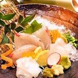 市場直送 新鮮鮮魚【宮崎県】