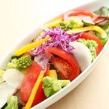 朝どれ三浦野菜のサラダ
