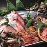 湘南佐島漁港や北海道・青森から新鮮な海の幸をお届け!