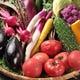 野菜は有機野菜など 契約農家直送の三浦野菜を使用