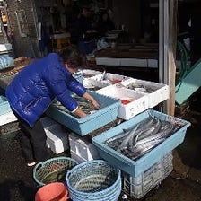 北海道・青森、佐島漁港直送鮮魚!