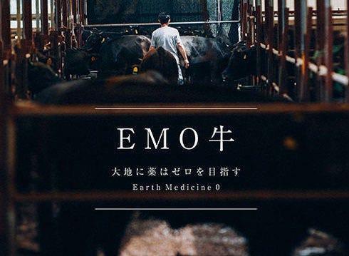有田牛 EMO牛
