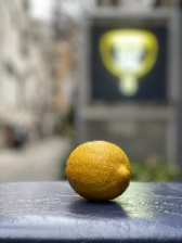 瀬戸内無農薬レモン