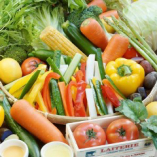 地元契約農家の新鮮野菜【兵庫県】