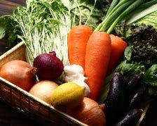 契約農家直送野菜のこだわり野菜使用
