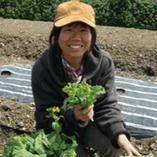●女性農家誕生!「ユリ農園」米谷 友里●【兵庫県神戸市西区】