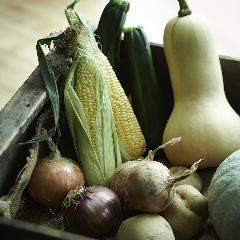 野菜ビストロ レギューム
