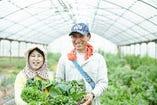 ~健康な野菜栽培~ 神戸市西区 池上農園【兵庫県神戸市西区】