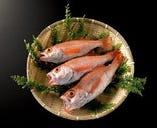 白身魚の王様【のど黒】【石川県】