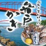 牡蠣の生産量日本有数の 呉市音戸町の牡蠣です【広島県】