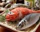 お魚、ホント色々やってます。是非に。