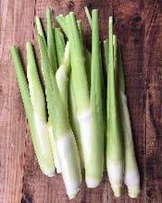 10月おすすめの野菜