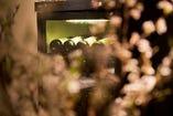 ワインセラーには、イタリアワインを中心に100種以上が揃う。