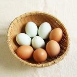 プレミアム卵「東北牧場の卵、青玉・赤玉」【「東北牧場」】