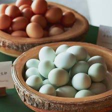 【1個300円】東北が誇る2種の有精卵