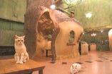 Cat Cafe てまりのおうち