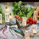 豊浜港水揚げ鮮魚【愛知県】