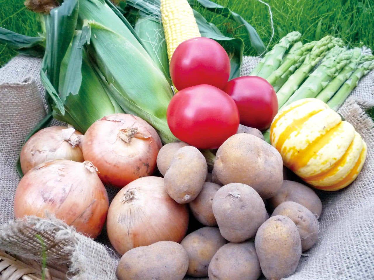 北海道産 特別栽培野菜
