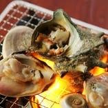 貝の焼き物(ハマグリ、サザエ)