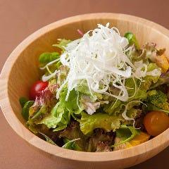 朝摘み旬野菜のサラダ