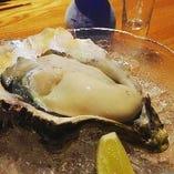 夏の牡蠣(岩牡蠣)産地直送、6月~