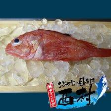 季節の鮮魚をご用意!!