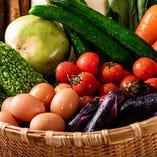 当店では産地直送の新鮮野菜を使用。定食でもお楽しみ頂けます!