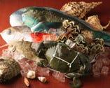 沖縄直送 島魚 空輸で新鮮 種類も豊富