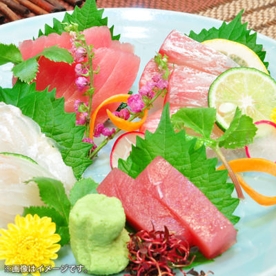 新鮮魚介のお料理も!