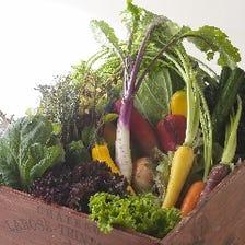 ◆県産野菜をたっぷり召し上がれ