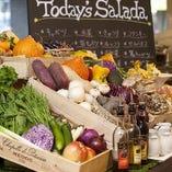 県産野菜を中心に、新鮮な野菜を使った料理が盛りだくさん。