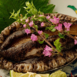 店内の生け簀で泳ぐ、新鮮な魚介類を調理しています