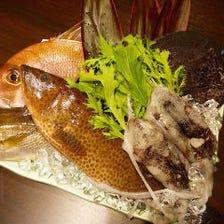 日本各地からの直送鮮魚
