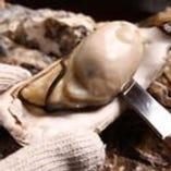 赤穂の牡蠣【兵庫県】